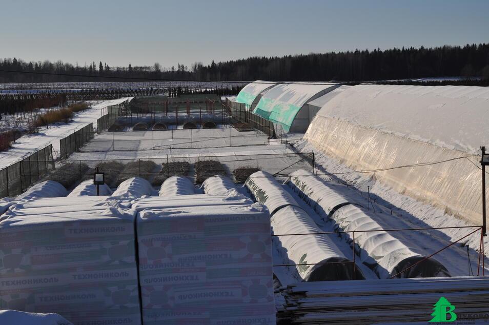 Наш тепличный комплекс зимой 2016 года