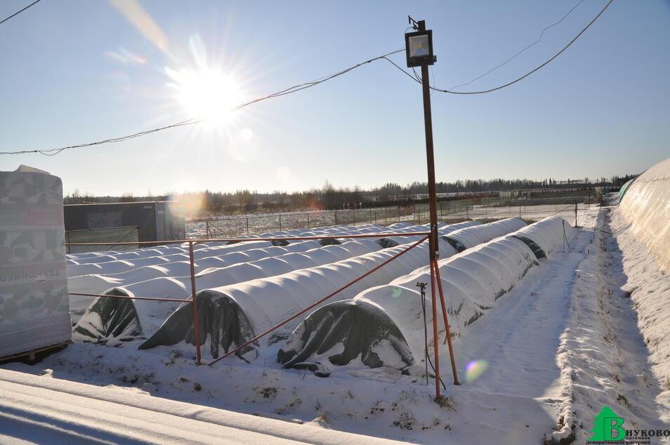 Укрытие контейнерной площадки на зиму