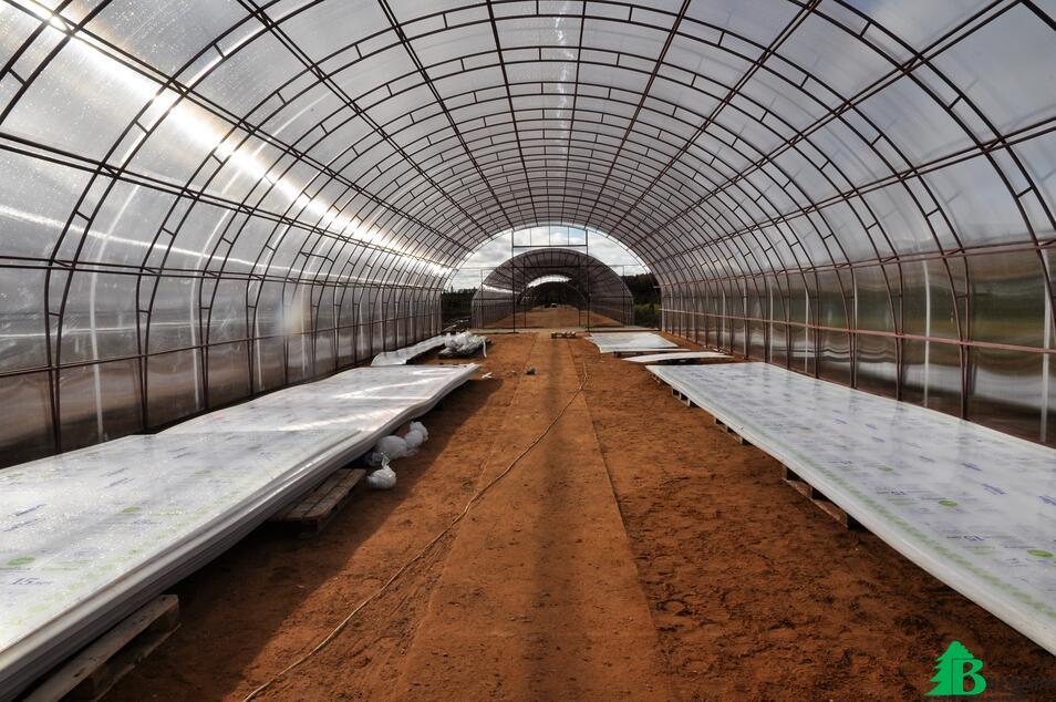 Тепличный комплекс питомника Внуково в 2017 году пополнился шестью промышленными теплицами собственного производства.